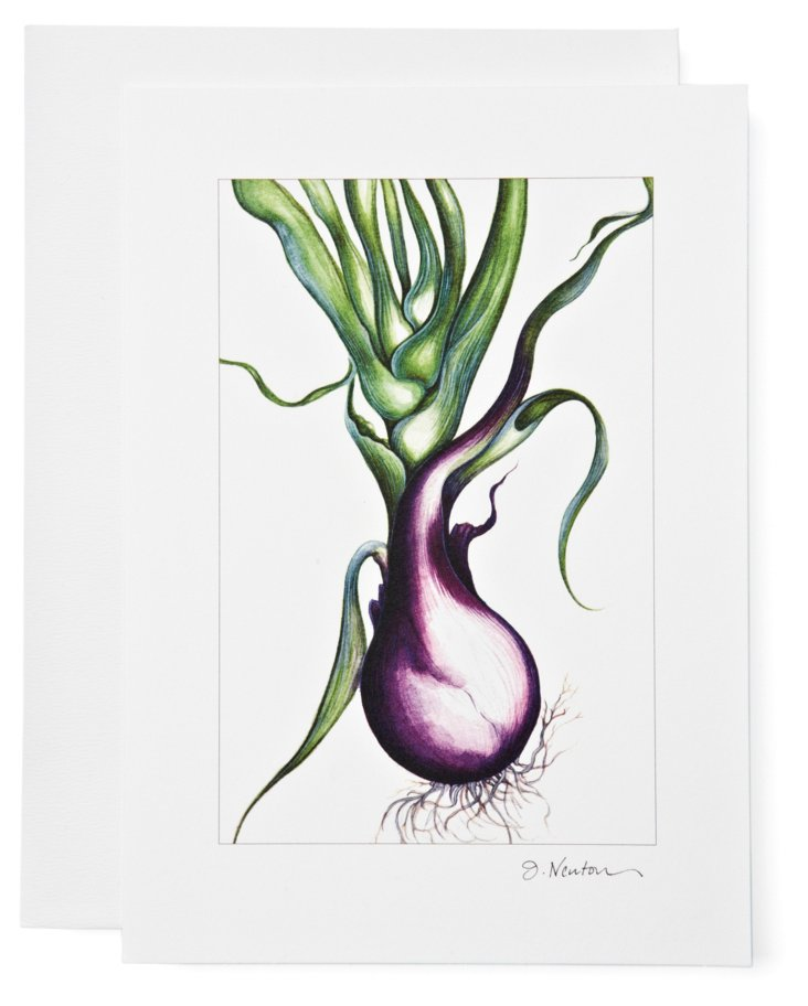 S/2 Note Cards, Red Onion