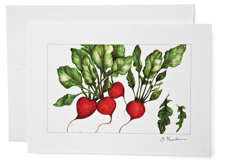 S/12 Note Cards, Radishes