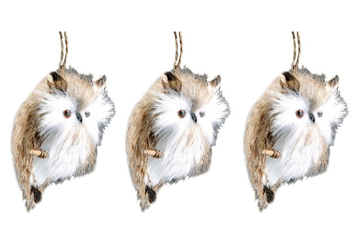 S/3 Owl Ornaments, Brown/White