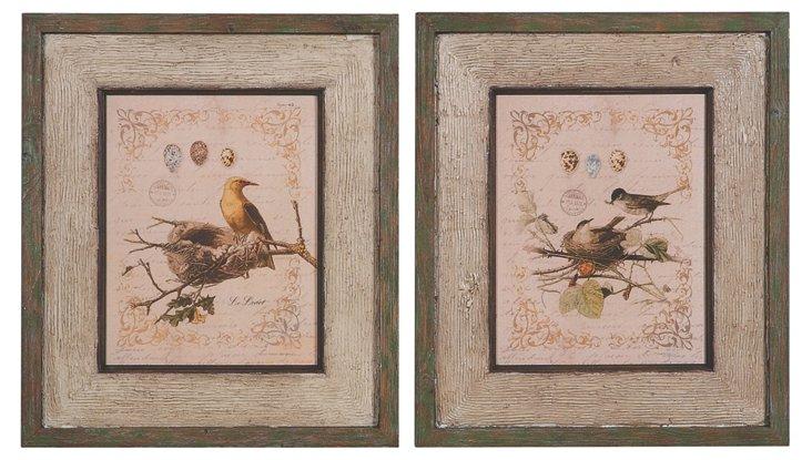 Bird Book Framed Plaque Set
