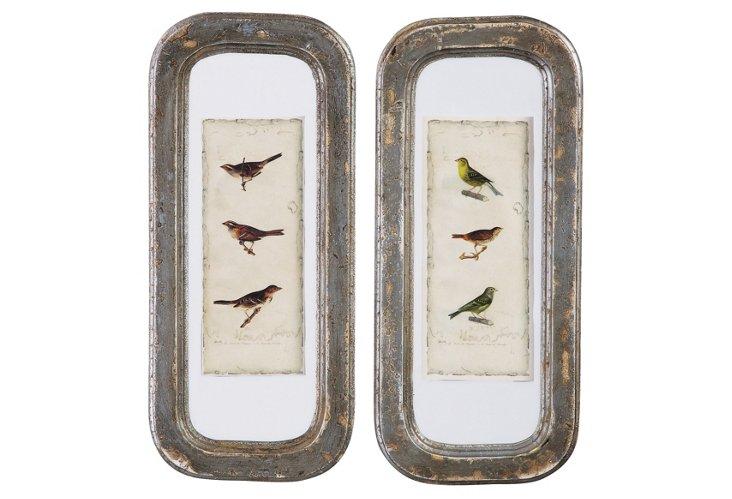 Aviary Wall Plaques Set