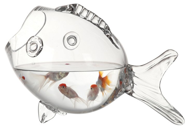 """15"""" Glass Fish Container, Clear"""