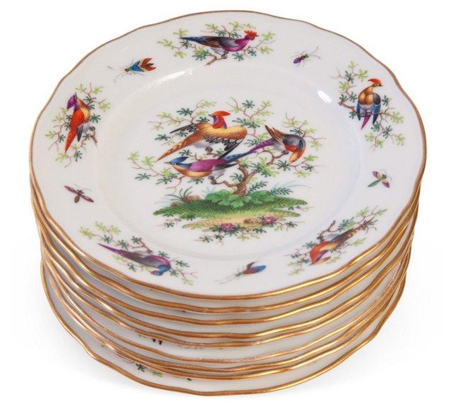 Dresden Porcelain Plates, Set of 9