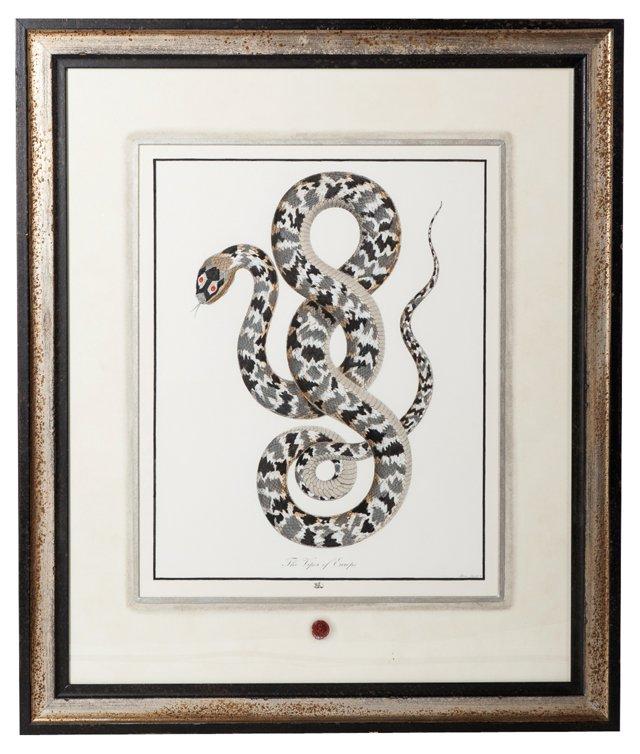 Snake Print I