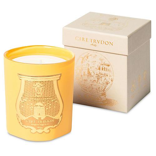Cyrnos Candle, Marigold