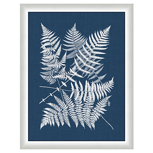 Polypodes Ferns in Navy Linen