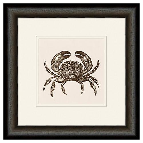 Melissa Van Hise, Crab