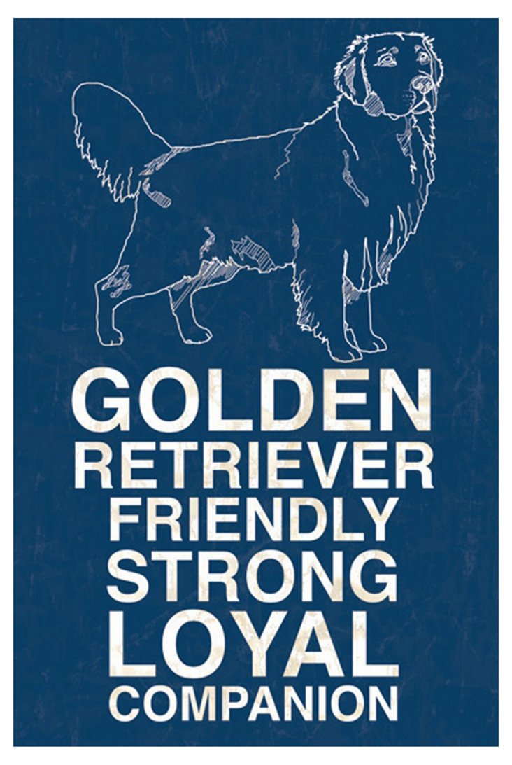 Golden Retriever, Blue