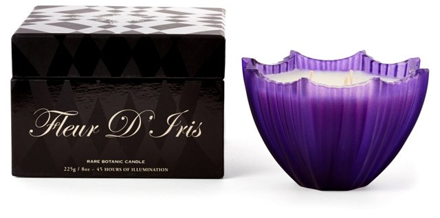 Frosted Scallop Candle, Iris
