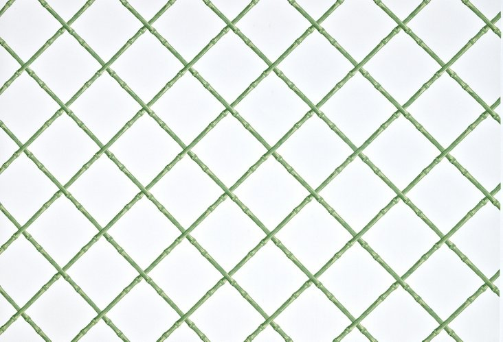 Bamboo, Green