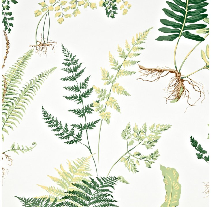 Ferns Wallpaper, Bright on White