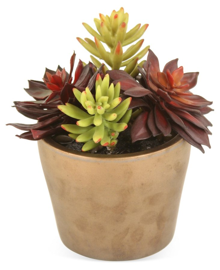 "7"" Succulents in Pot, Faux"