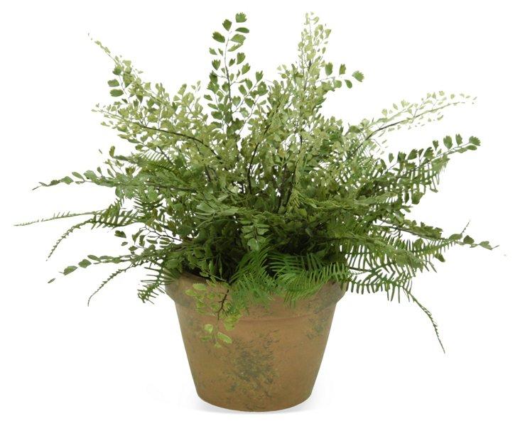 """19"""" Ferns in Pot, Faux"""