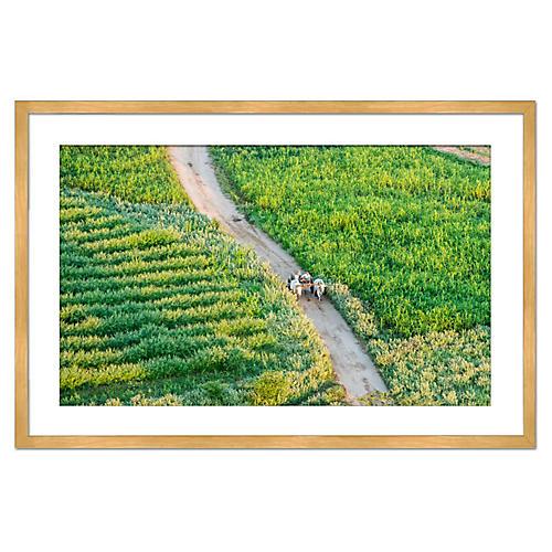 Myanmar Farmers, Richard Silver