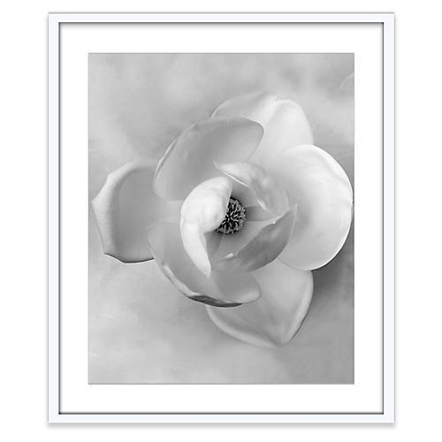 Amy Neunsinger, Wedding Magnolia