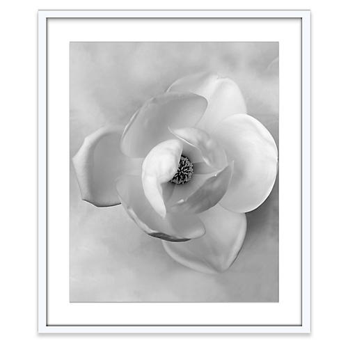 Amy Neunsinger, Wedding Magnolia