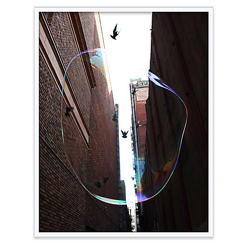 Surface Tension IX Photograph