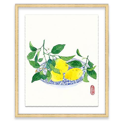 Lemons, Gabby Malpas
