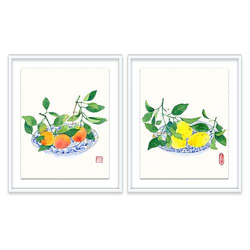 Gabby Malpas, Clementines & Lemons Diptych