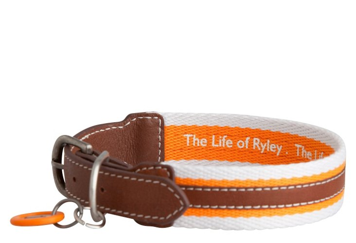 Rugby Collar, Orange