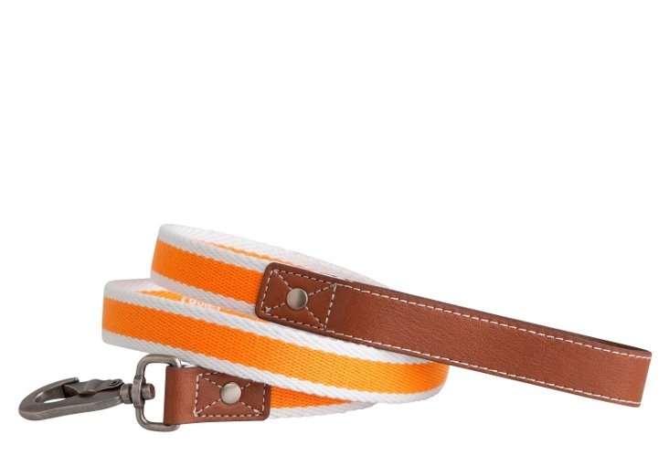 Rugby Leash, Orange