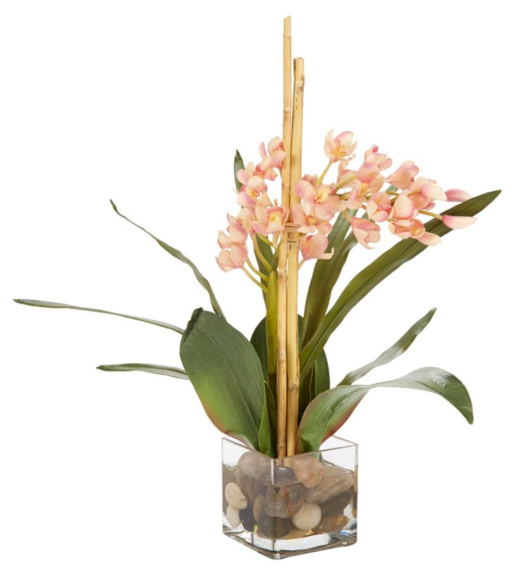 "20"" Orchids in Glass Cube, Pink"