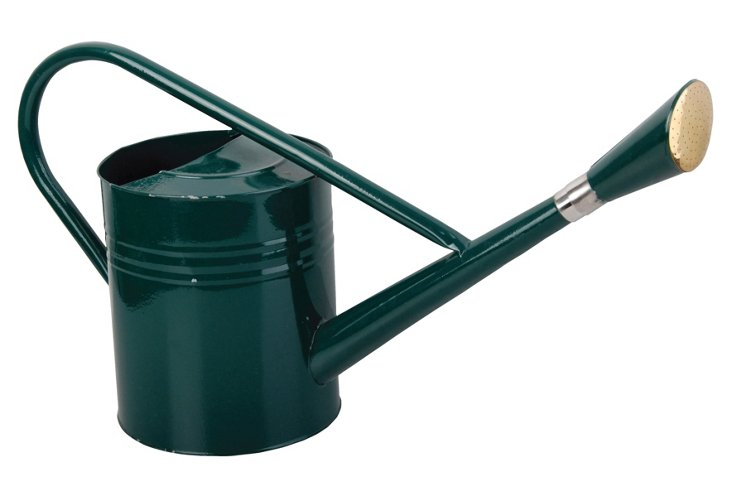 Green Watering Can , 7.5L
