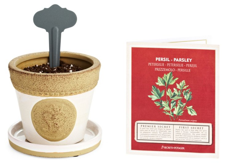 S/2 Parsley Growing Sets