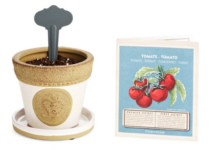 S/2 Tomato Essentials Sets