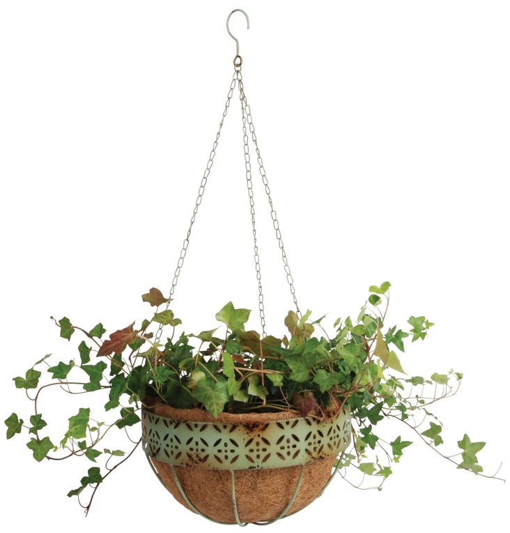 "12"" Hanging Basket, Green"