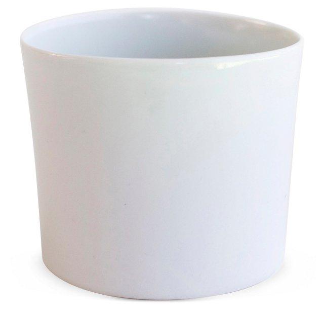 Chemist Cup, Short