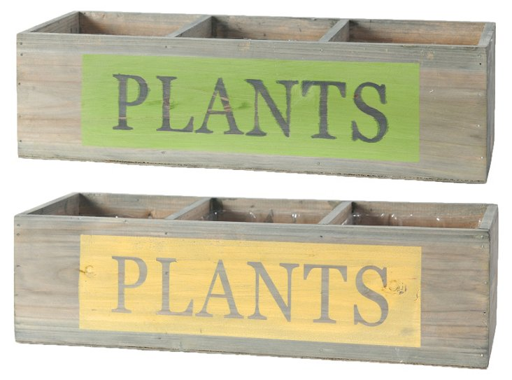 "Long ""Plants"" Boxes, Asst. of 2"