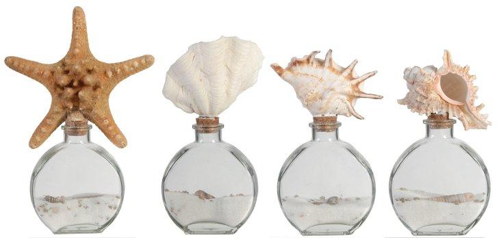Asst. of 4 Shell Bottles, Clear/Brown