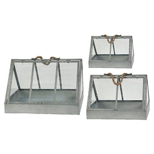 Asst. of 3 Triangular Glass Terrariums