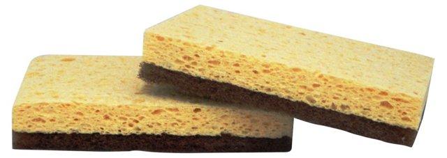 S/6 Walnut Sponges