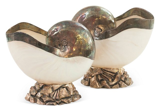 Mother-of-Pearl Shells, Pair