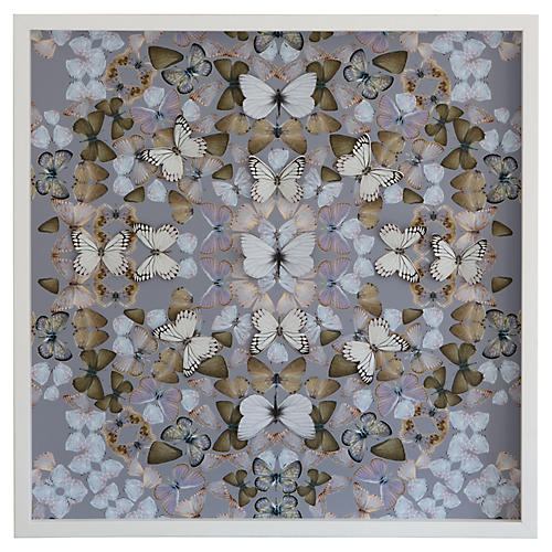 Dawn Wolfe, Butterfly Construction: Lavender