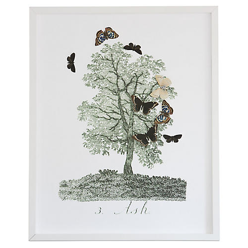 Dawn Wolfe, Tree w/Butterfly Cutouts: Ash