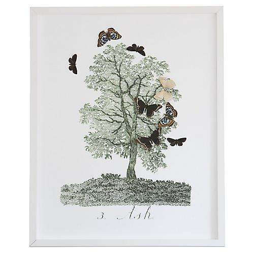 Dawn Wolfe, Tree w/Butterfly Cutouts: Ash