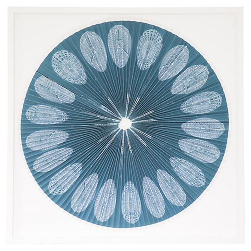 Dawn Wolfe, Pleated Sea Creatures