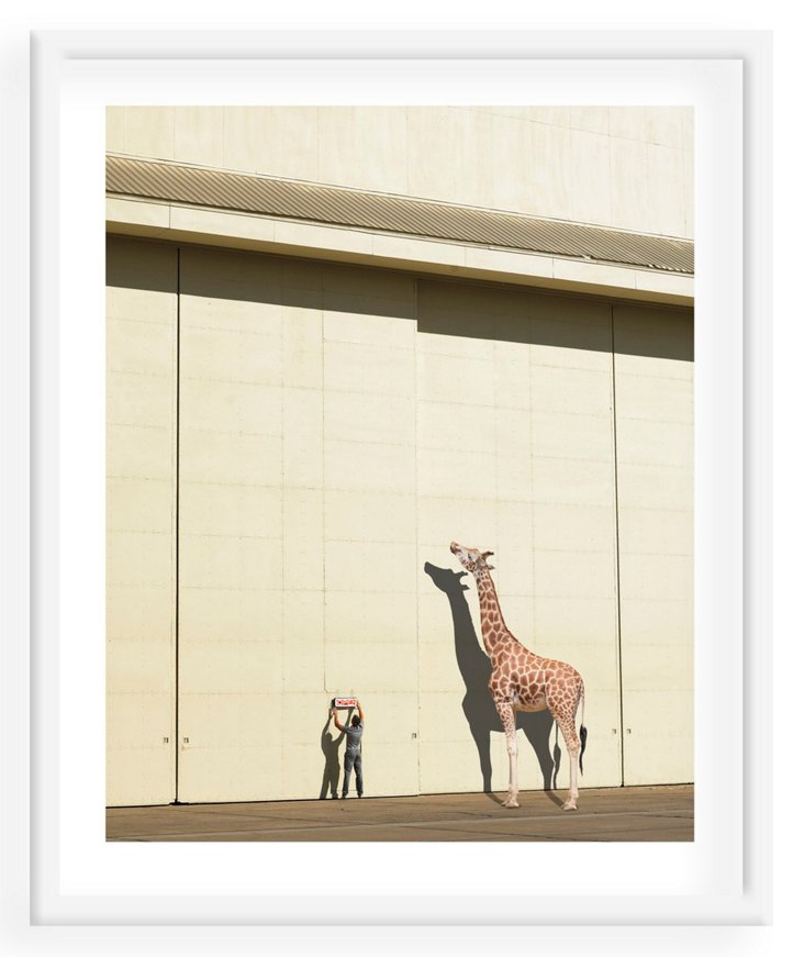 Richard Newstead, Curious Giraffe