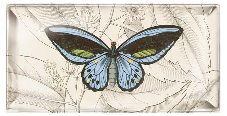 9x5 Butterfly Tray