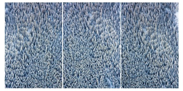 Gray Malin, Aspen Tree Triptych Vertical