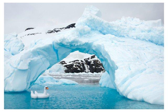 Swan Ice Arch