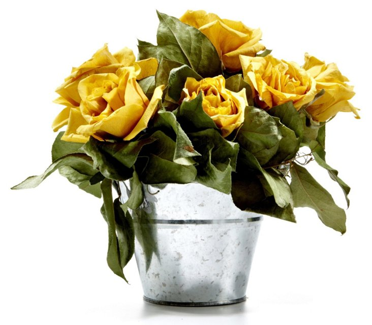 """9"""" Roses in Bucket, Dried"""