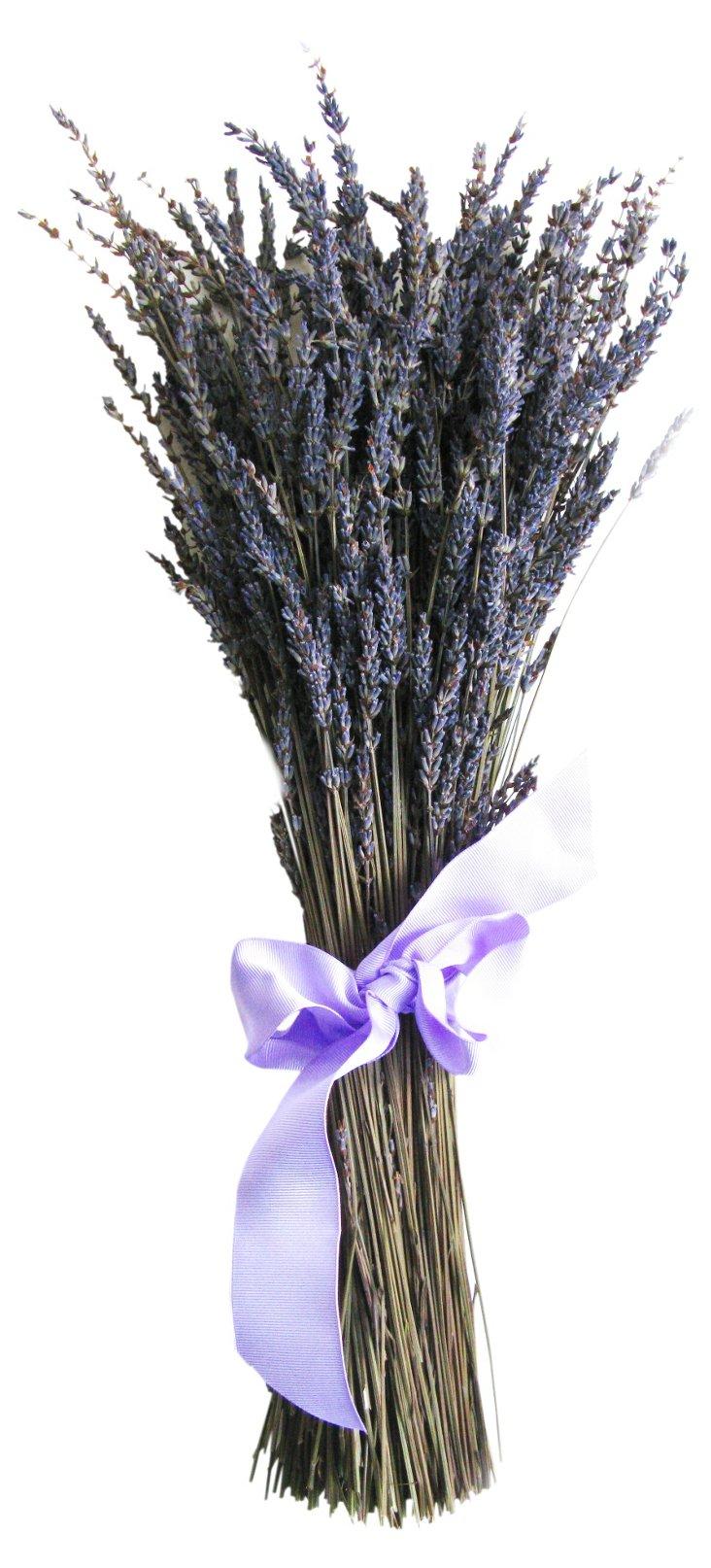 "12"" Lavender Bundle, Dried"