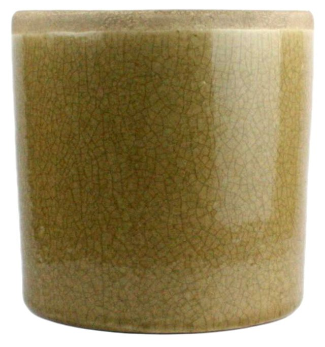 "6"" Mulberry Cylinder Vase, Yellow"