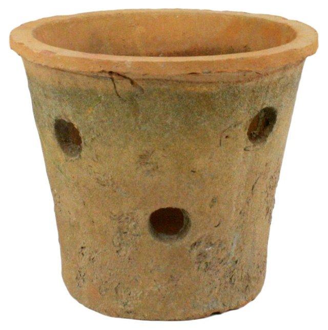 """6"""" Rustic Terracotta Orchid Pot, Natural"""