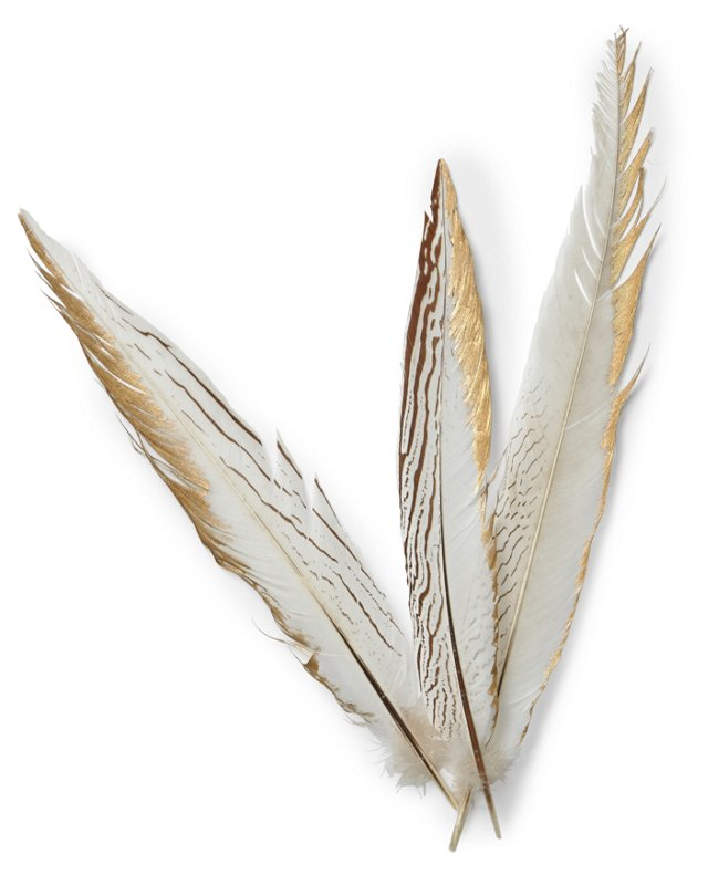 S/3 Pheasant Feathers w/ Gold
