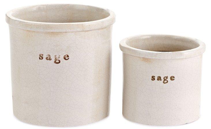 Sage Herb Pots, Asst. of 2